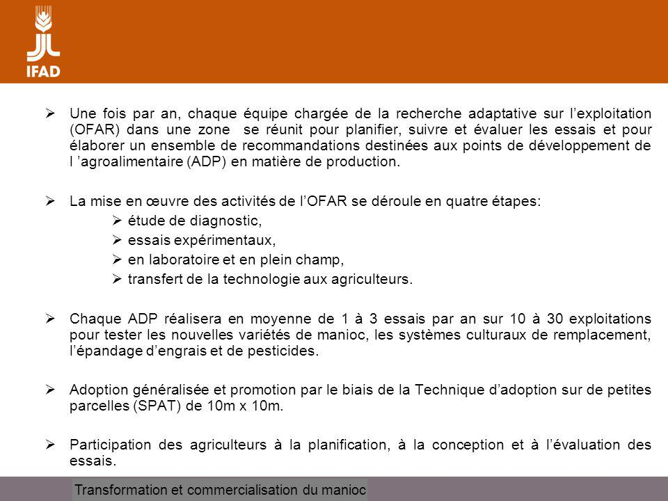 Transformation et commercialisation du manioc