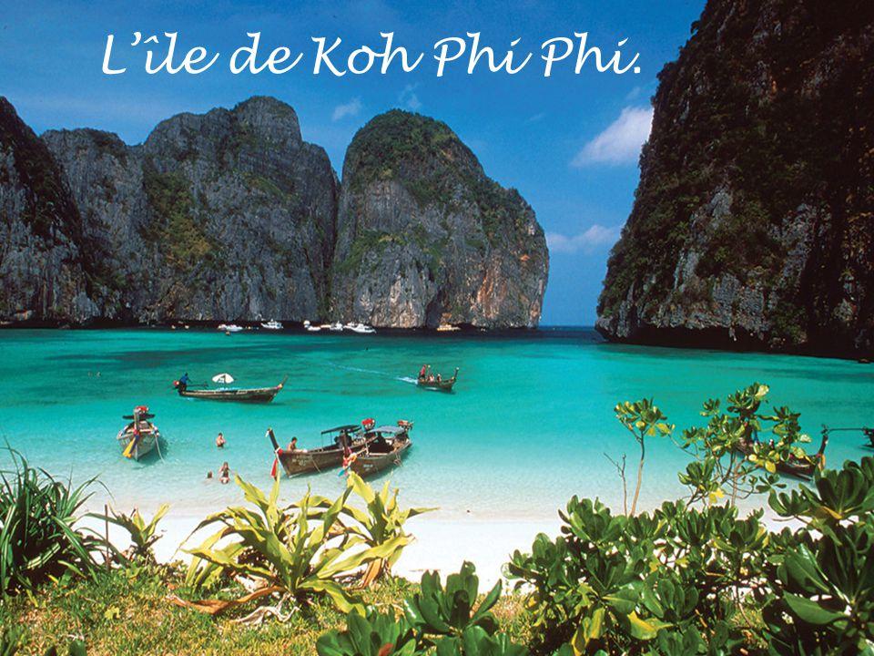 L'île de Koh Phi Phi.