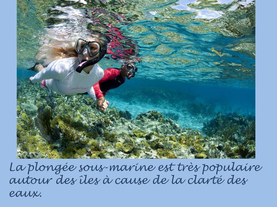 La plongée sous-marine est très populaire autour des îles à cause de la clarté des eaux.