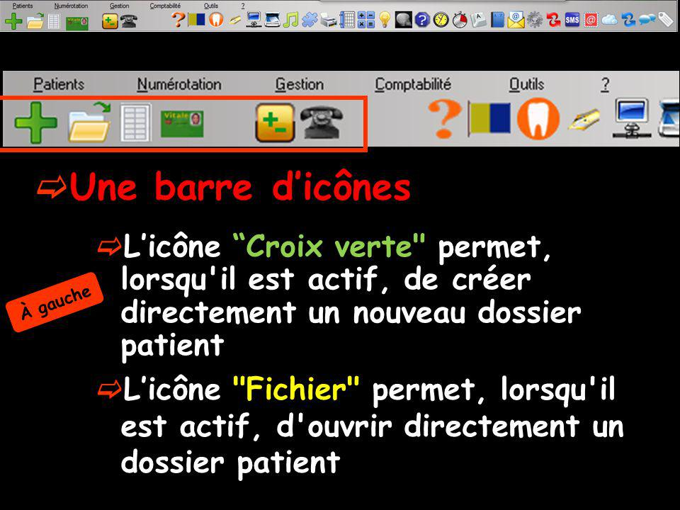 Une barre d'icônes L'icône Croix verte permet, lorsqu il est actif, de créer directement un nouveau dossier patient.