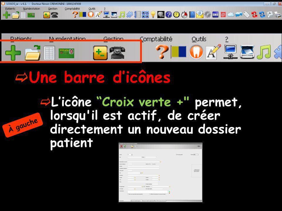 Une barre d'icônes L'icône Croix verte + permet, lorsqu il est actif, de créer directement un nouveau dossier patient.