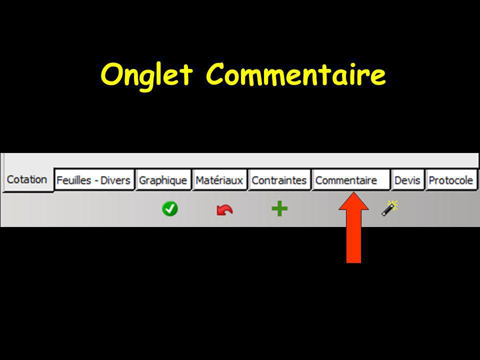 Onglet Commentaire