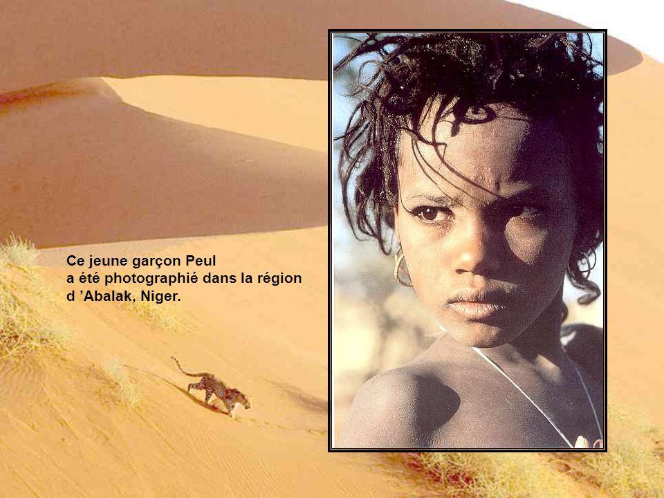 Ce jeune garçon Peul a été photographié dans la région d 'Abalak, Niger.