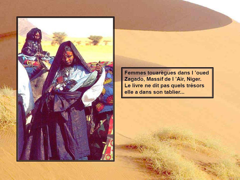 Femmes touarègues dans l 'oued