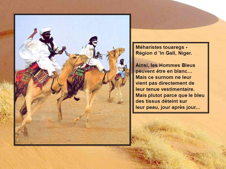 Méharistes touaregs - Région d 'In Gall, Niger. Ainsi, les Hommes Bleus. peuvent être en blanc… Mais ce surnom ne leur.