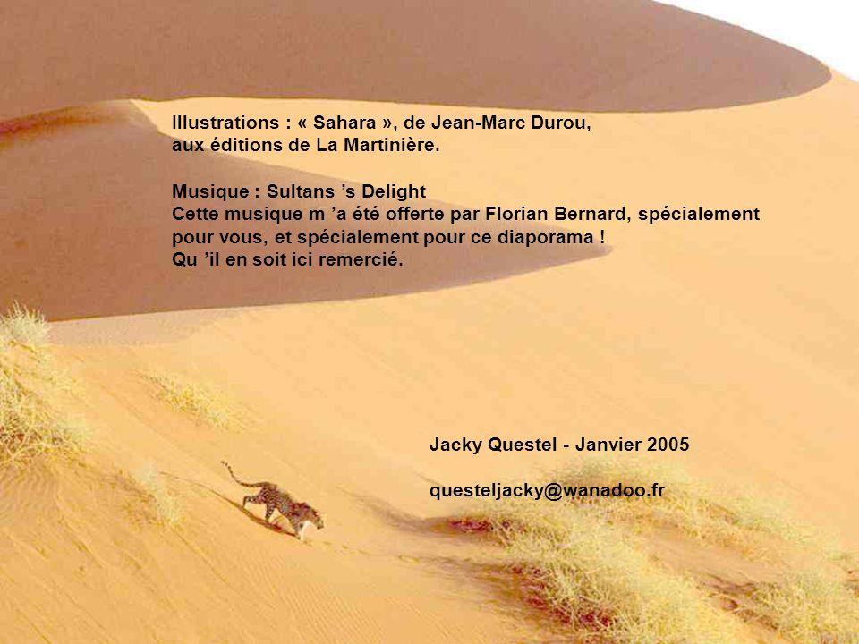 Illustrations : « Sahara », de Jean-Marc Durou,