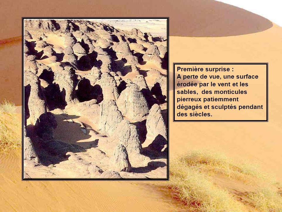 Première surprise : A perte de vue, une surface. érodée par le vent et les. sables, des monticules.