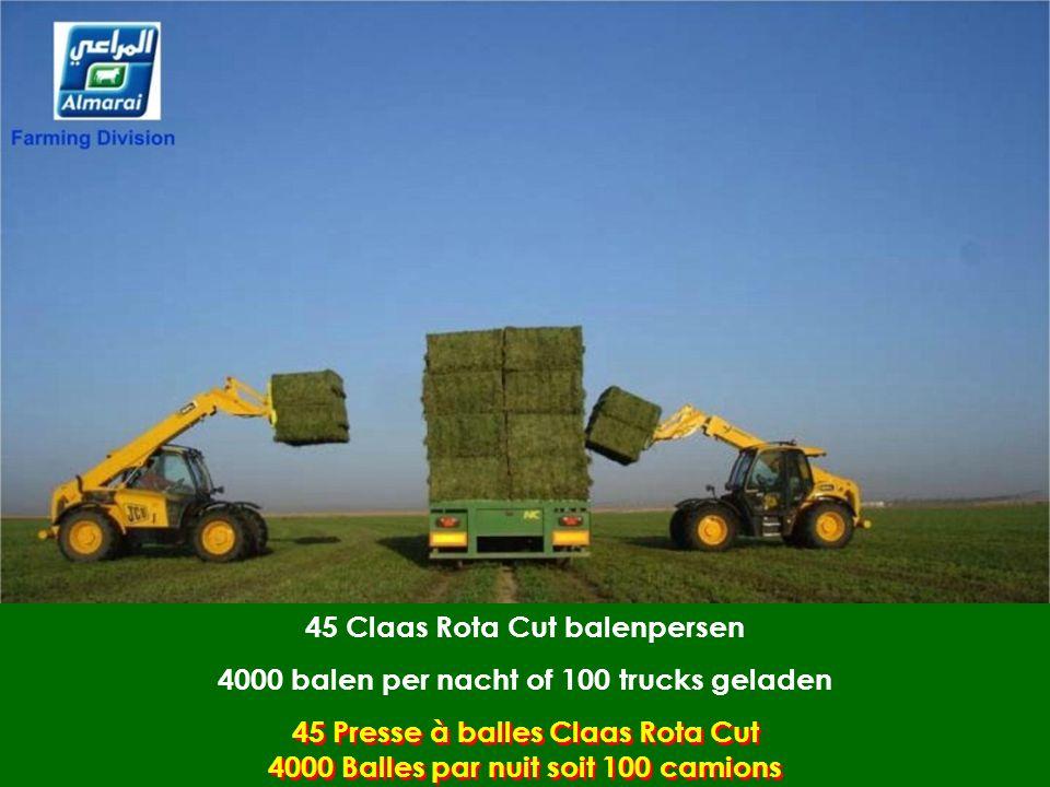 45 Claas Rota Cut balenpersen