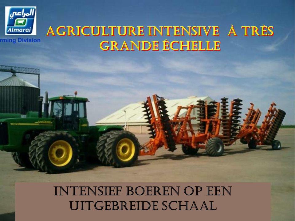 Agriculture intensive à très grande échelle