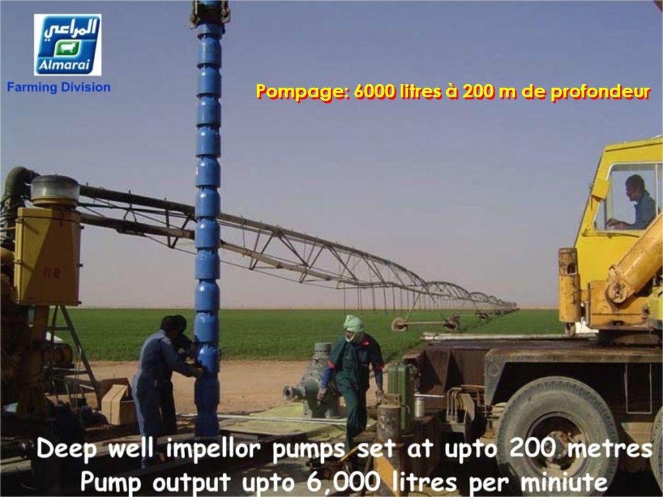 Pompage: 6000 litres à 200 m de profondeur
