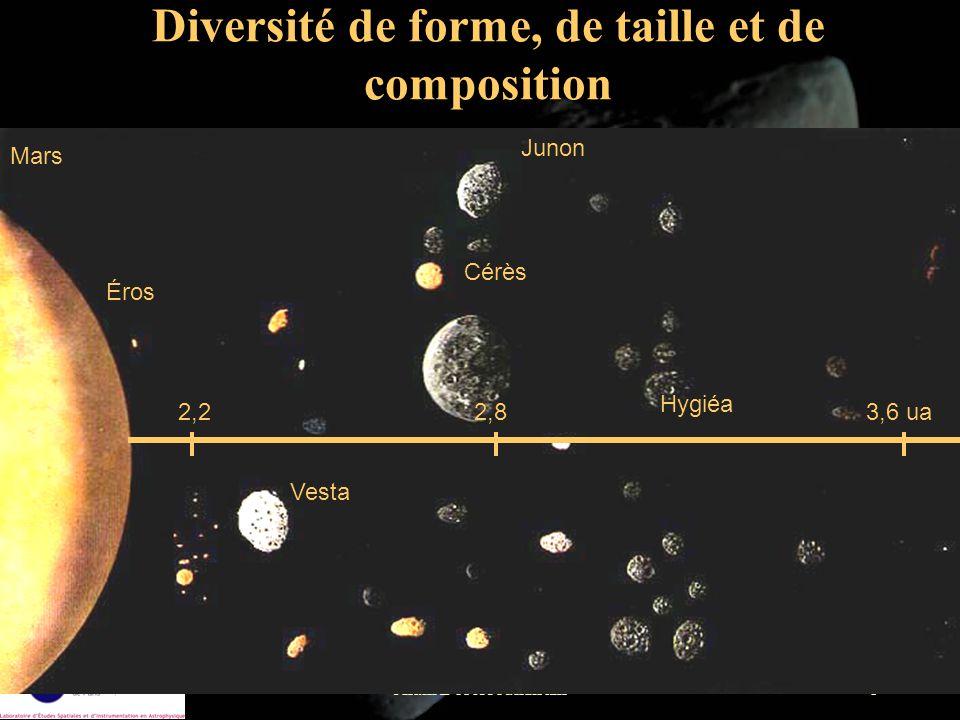 Diversité de forme, de taille et de composition