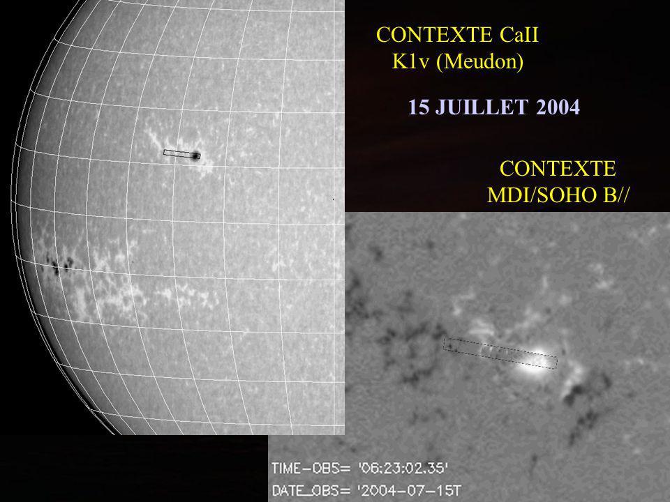 CONTEXTE CaII K1v (Meudon)