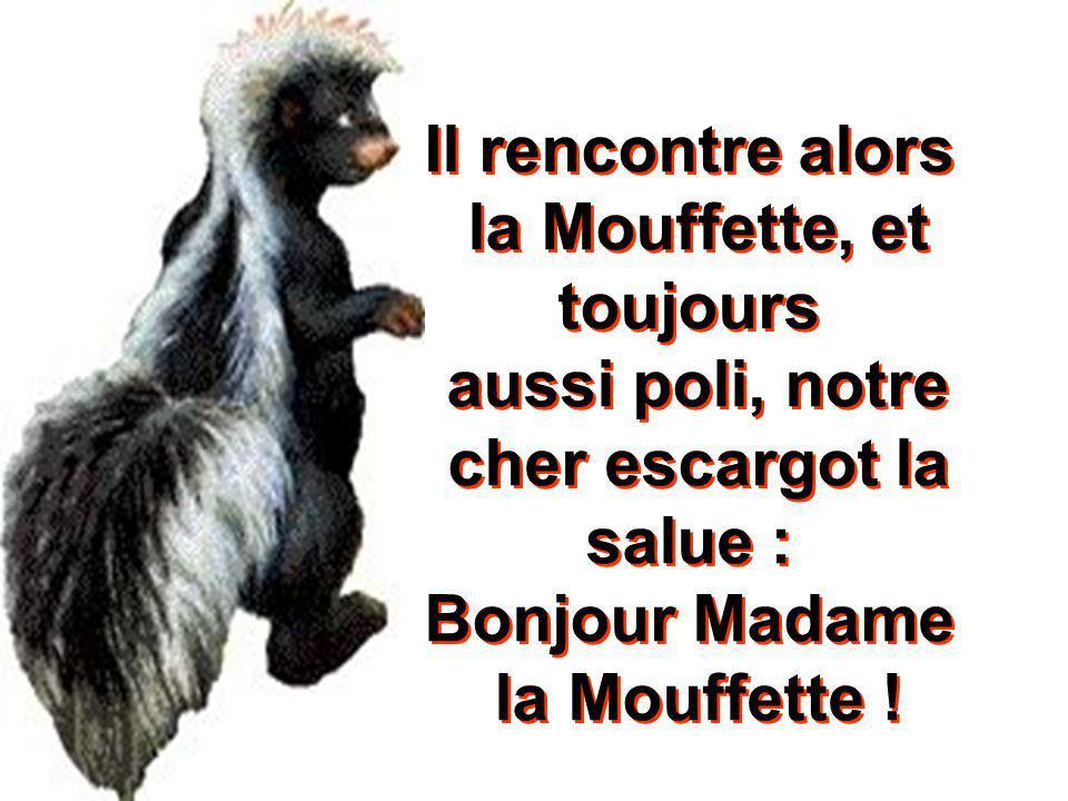 Il rencontre alors la Mouffette, et toujours aussi poli, notre cher escargot la salue : Bonjour Madame la Mouffette !