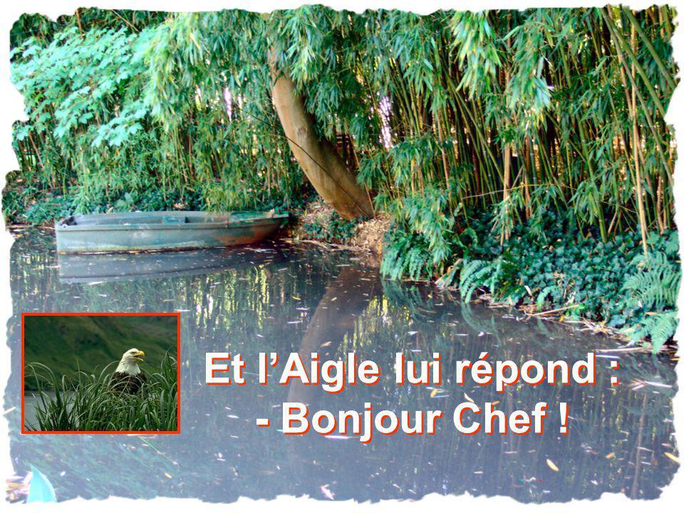 Et l'Aigle lui répond : - Bonjour Chef !