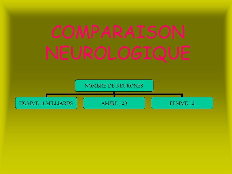 COMPARAISON NEUROLOGIQUE