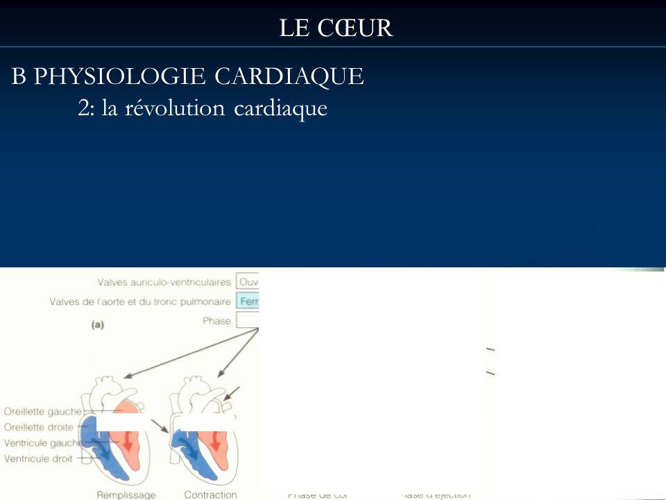 LE CŒUR B PHYSIOLOGIE CARDIAQUE 2: la révolution cardiaque