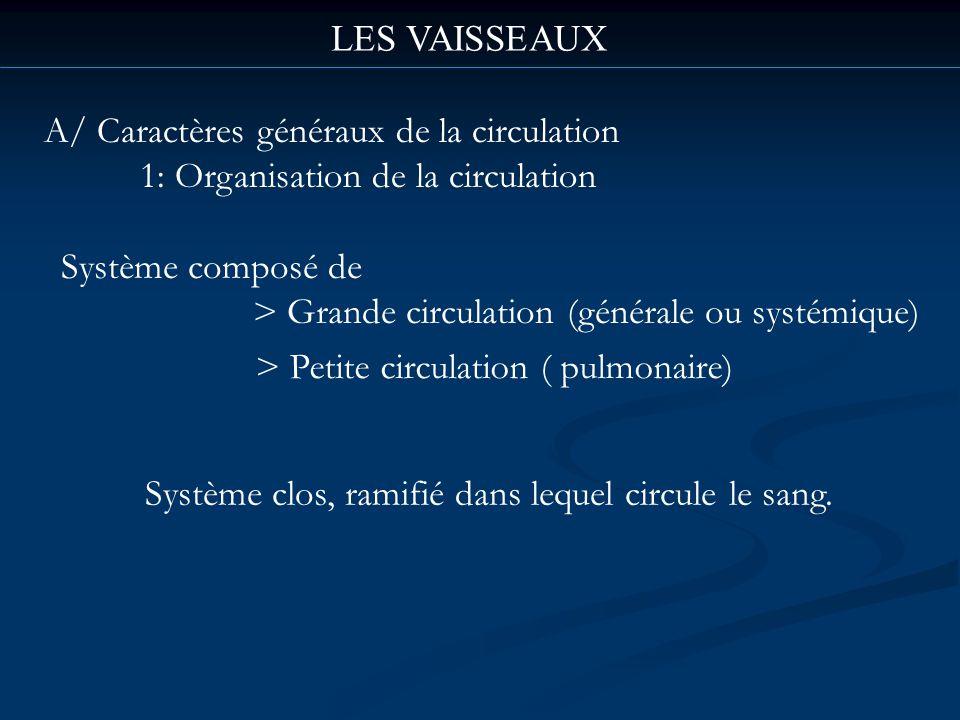 LES VAISSEAUX A/ Caractères généraux de la circulation. 1: Organisation de la circulation. Système composé de.