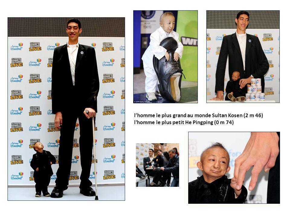 l'homme le plus grand au monde Sultan Kosen (2 m 46) l homme le plus petit He Pingping (0 m 74)