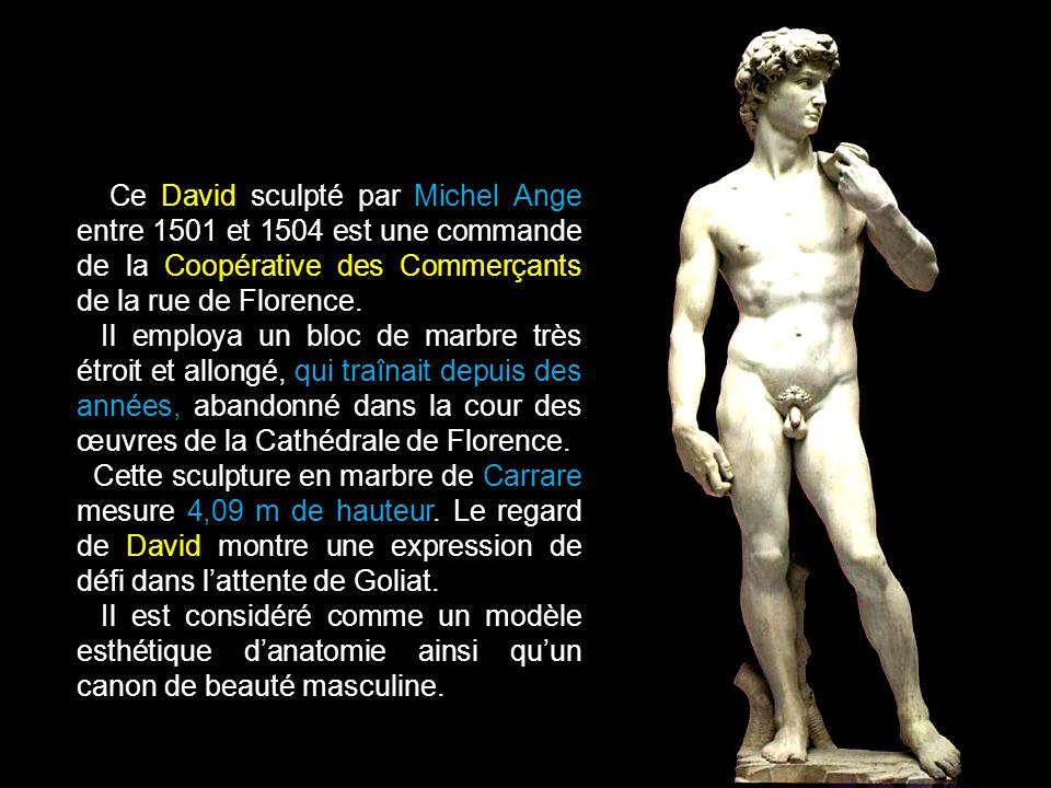 Ce David sculpté par Michel Ange entre 1501 et 1504 est une commande de la Coopérative des Commerçants de la rue de Florence.