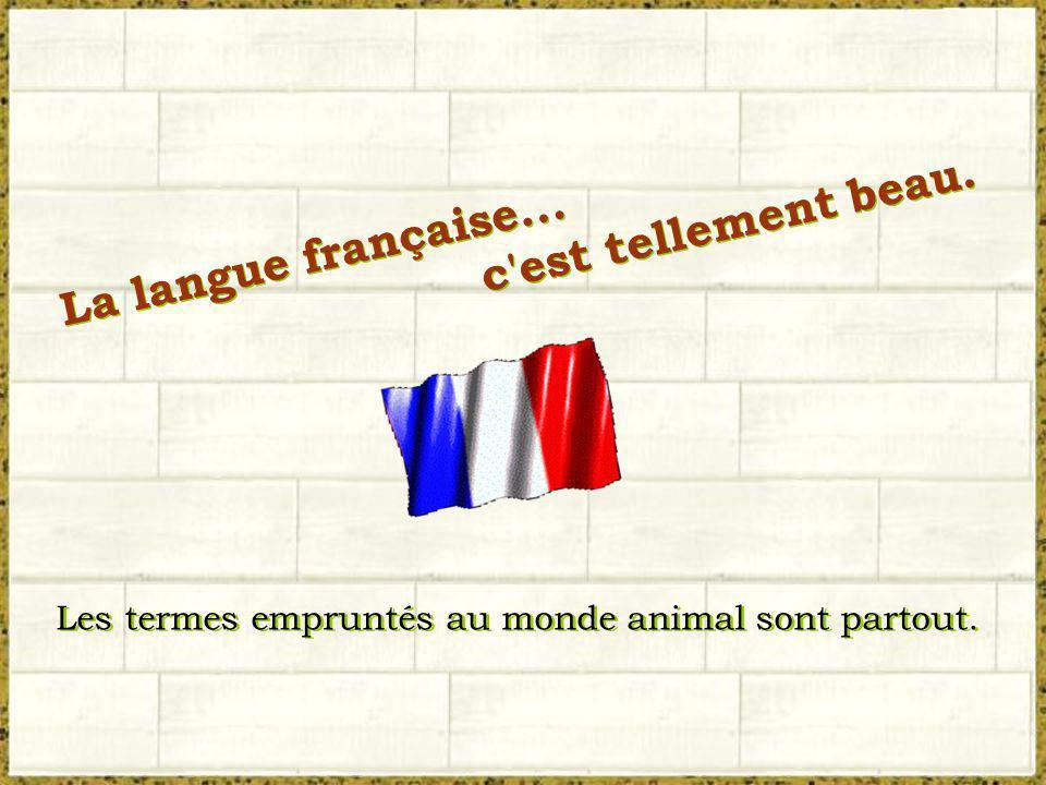 c est tellement beau. La langue française...