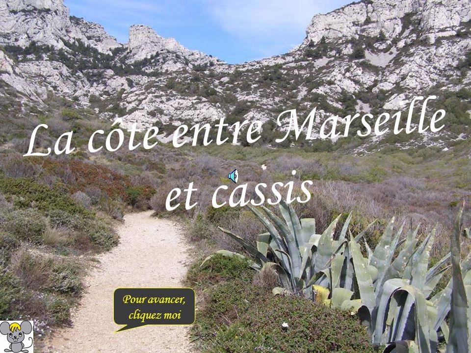 La côte entre Marseille et cassis