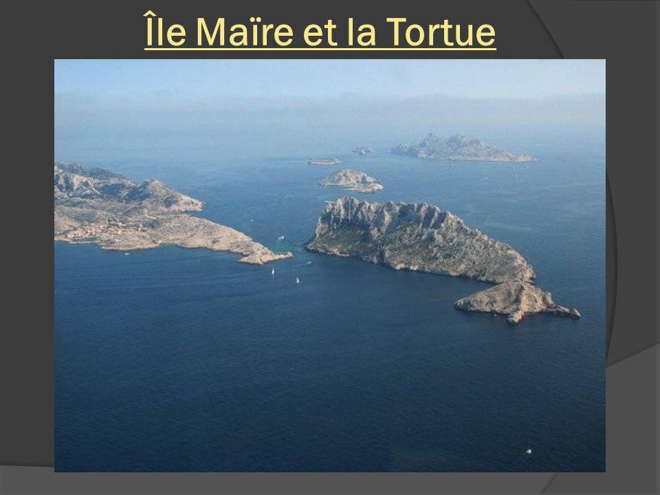 Île Maïre et la Tortue