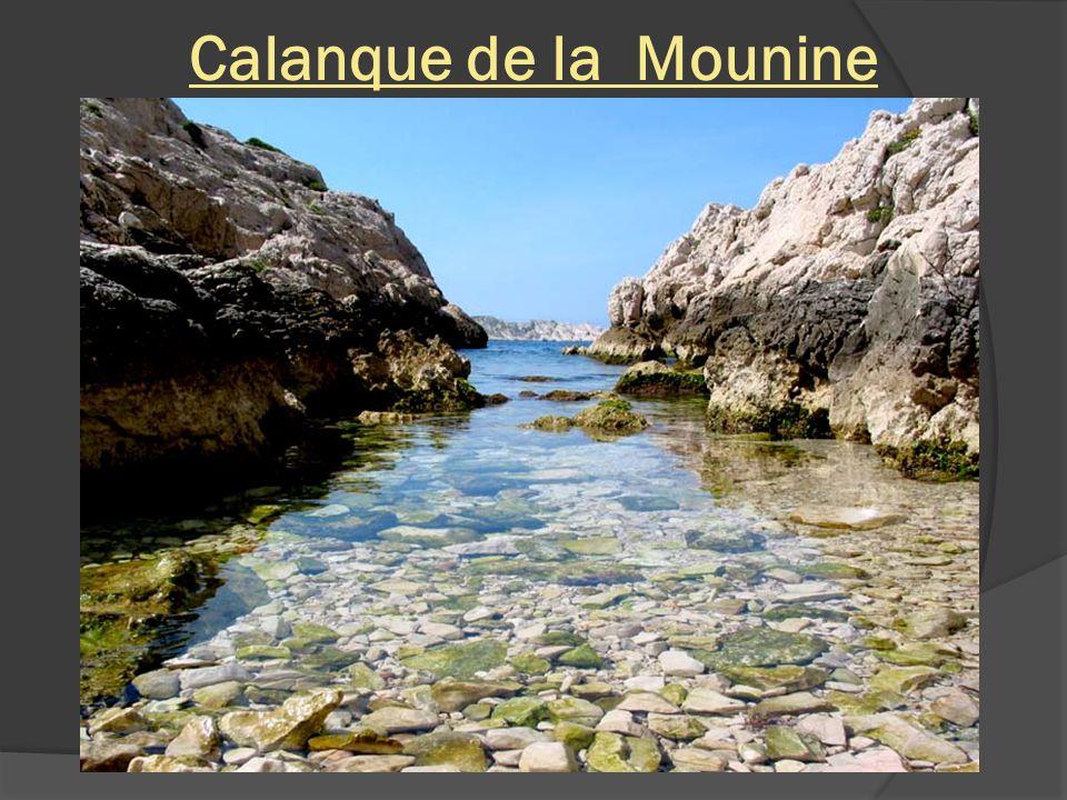 Calanque de la Mounine