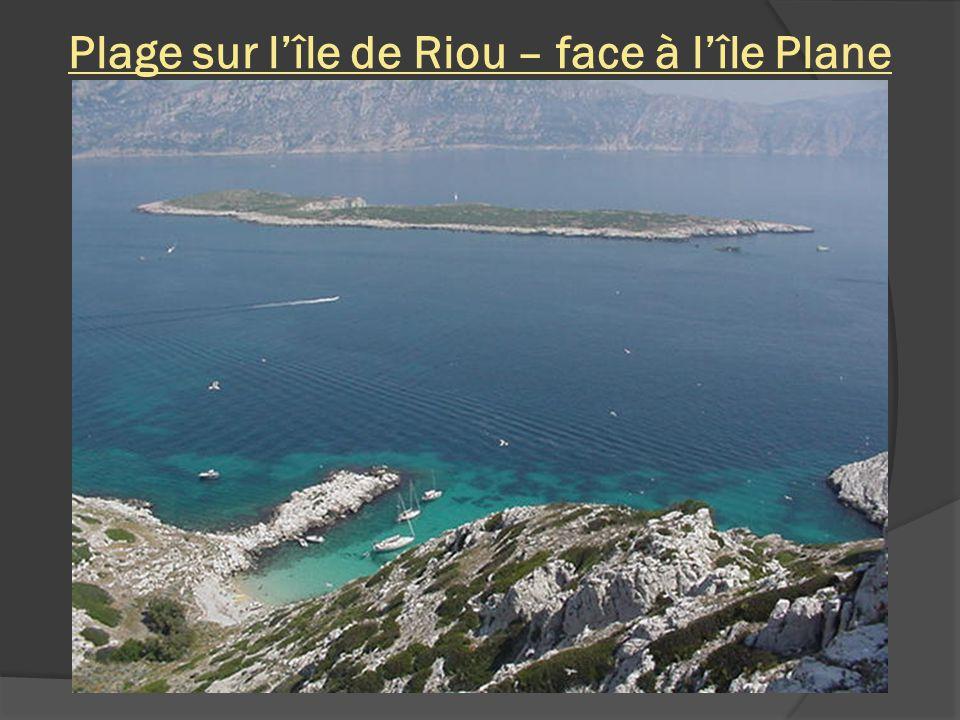 Plage sur l'île de Riou – face à l'île Plane
