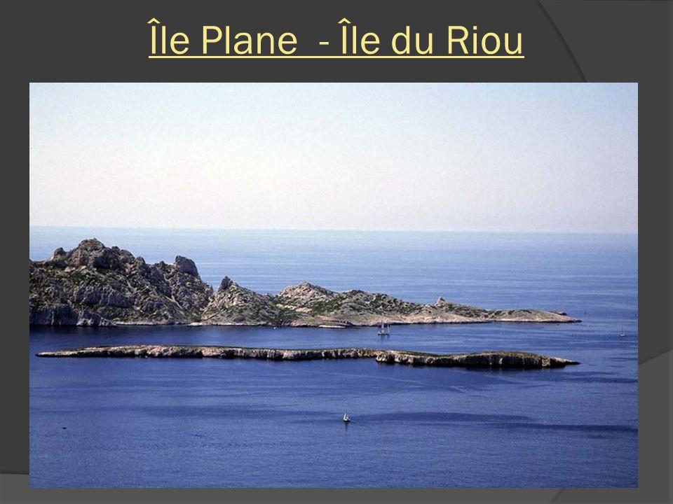 Île Plane - Île du Riou