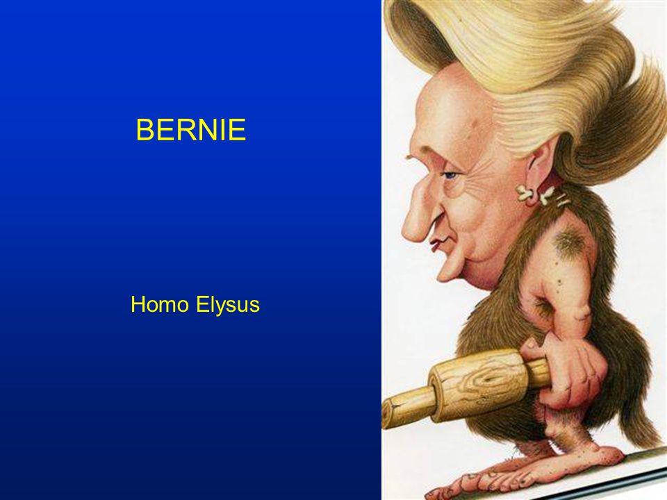 BERNIE Homo Elysus