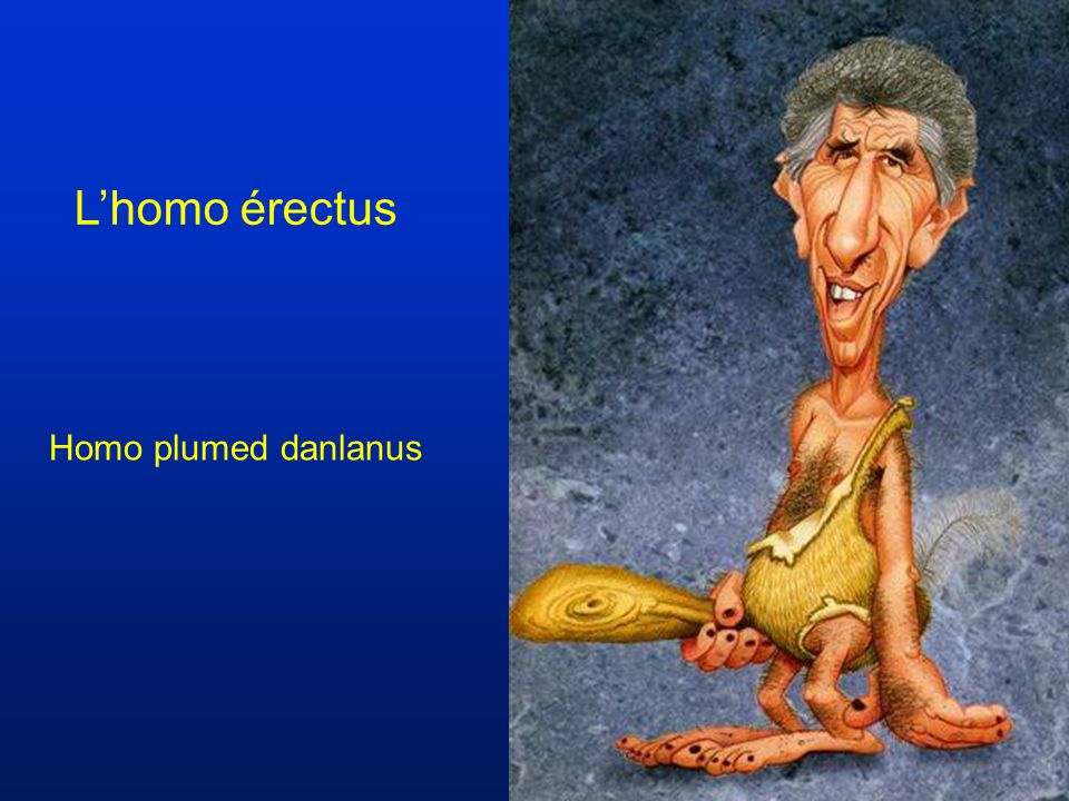 L'homo érectus Homo plumed danlanus
