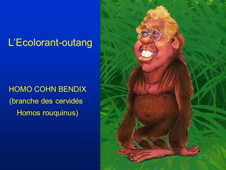 L'Ecolorant-outang HOMO COHN BENDIX (branche des cervidés