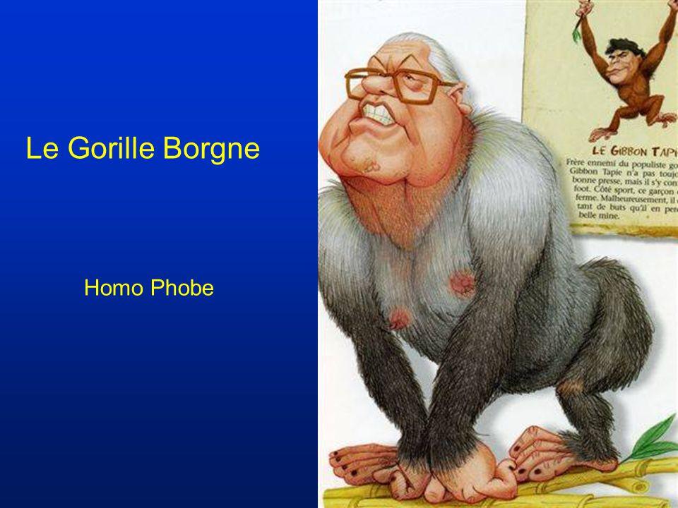Le Gorille Borgne Homo Phobe