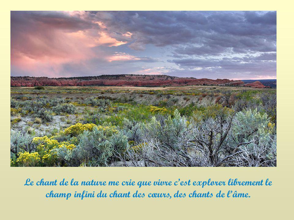 Le chant de la nature me crie que vivre c'est explorer librement le champ infini du chant des cœurs, des chants de l'âme.