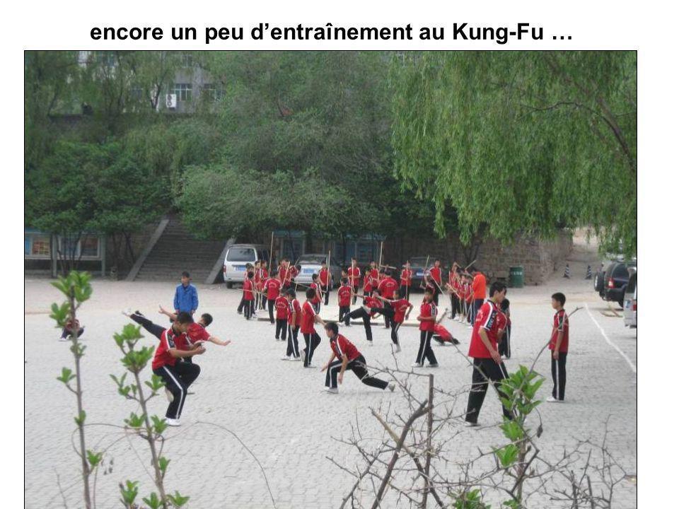 encore un peu d'entraînement au Kung-Fu …