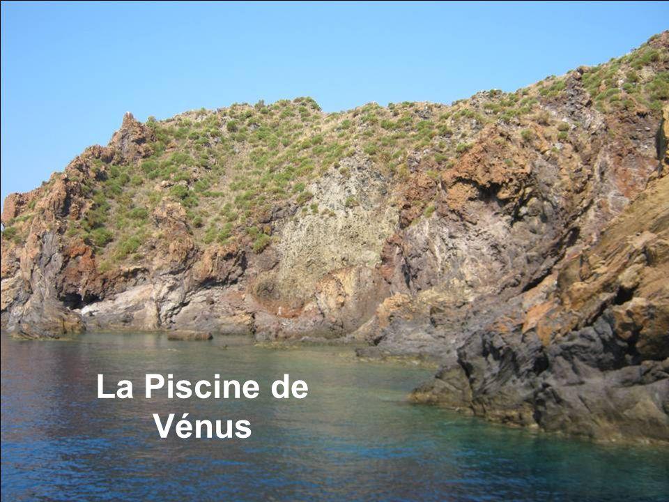 La Piscine de Vénus