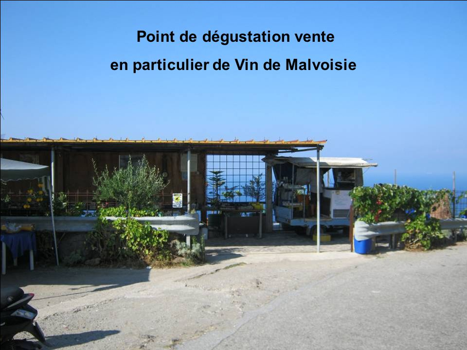 Point de dégustation vente en particulier de Vin de Malvoisie