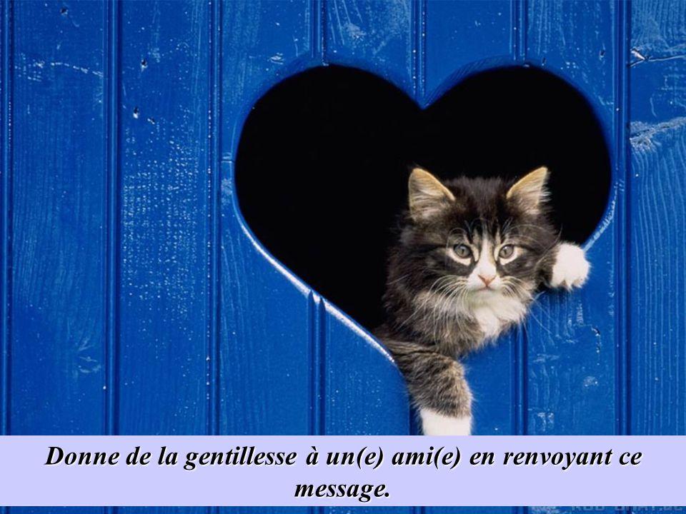 Donne de la gentillesse à un(e) ami(e) en renvoyant ce message.