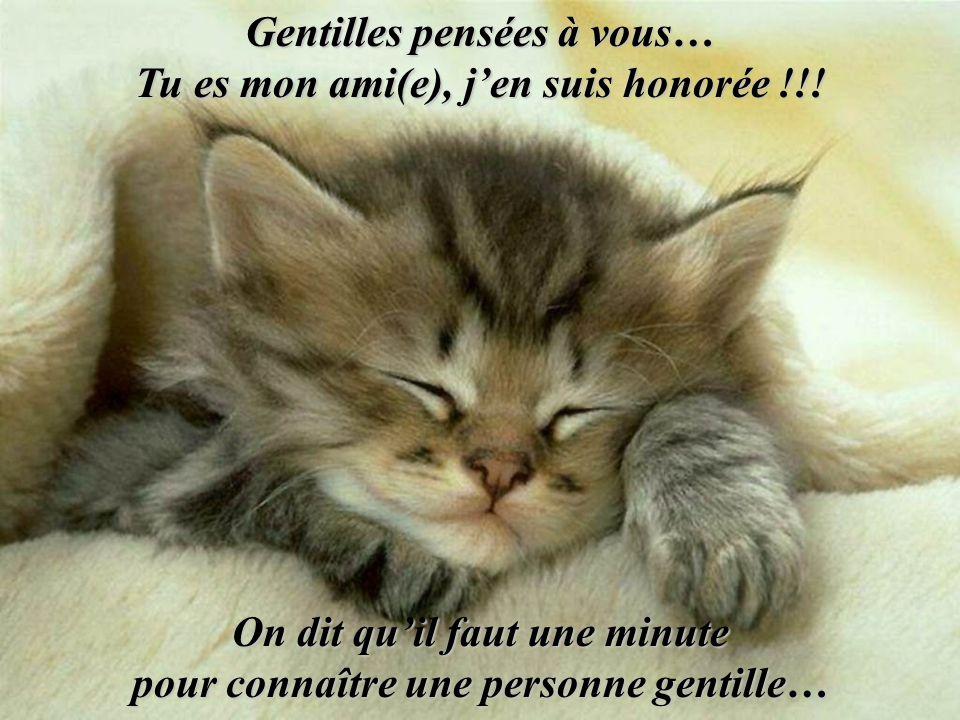 Gentilles pensées à vous… Tu es mon ami(e), j'en suis honorée !!!
