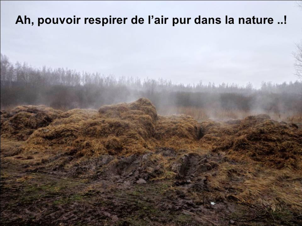 Ah, pouvoir respirer de l'air pur dans la nature ..!