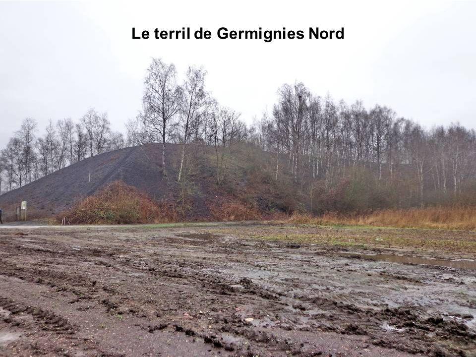 Le terril de Germignies Nord