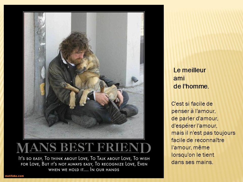 Le meilleur ami de l homme. C est si facile de penser à l amour,