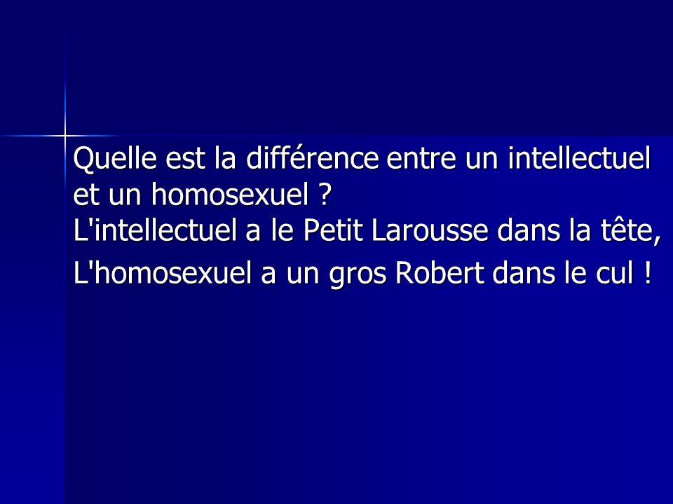 Quelle est la différence entre un intellectuel et un homosexuel