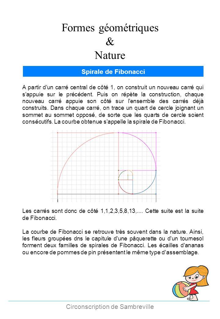 Formes géométriques & Nature