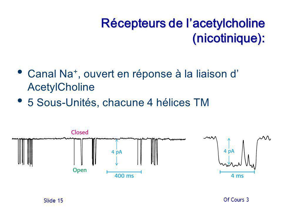 Récepteurs de l'acetylcholine (nicotinique):