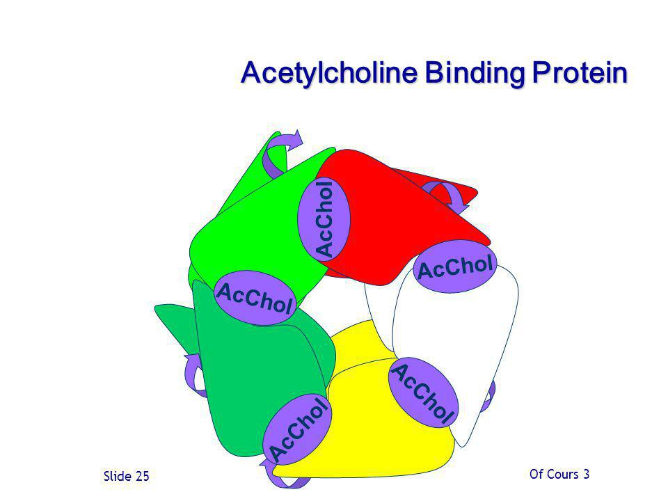 Acetylcholine Binding Protein