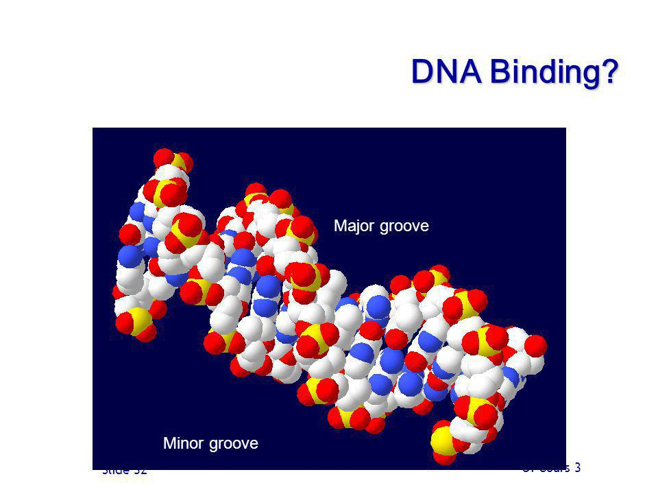 DNA Binding Major groove Minor groove Of Cours 3