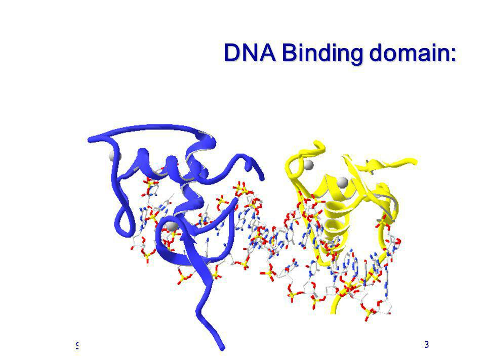 DNA Binding domain: Of Cours 3