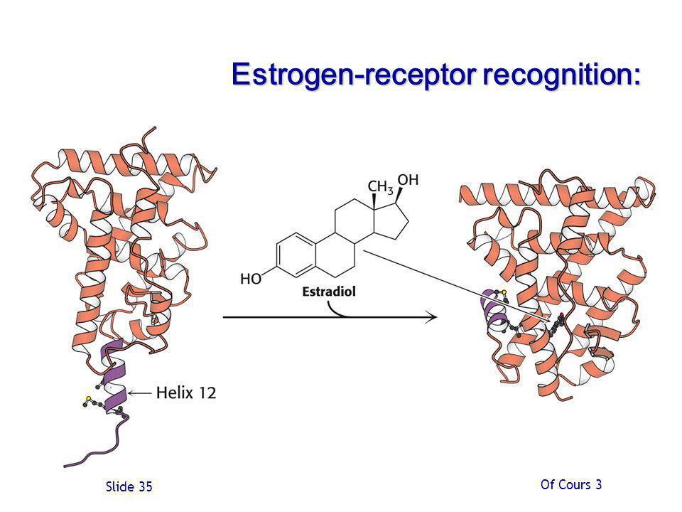 Estrogen-receptor recognition:
