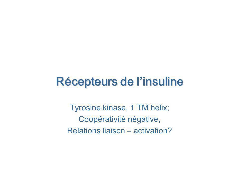Récepteurs de l'insuline